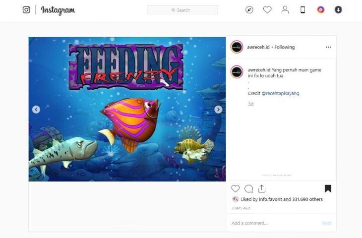 Feeding Frenzy. (instagram/awreceh.id)