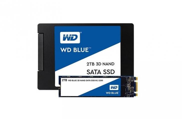 SSD WD Blue. (Western Digital)